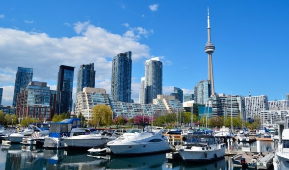 Photo of Toronto during the day, with the CN tower brightly lit and on the right-side of the photo.